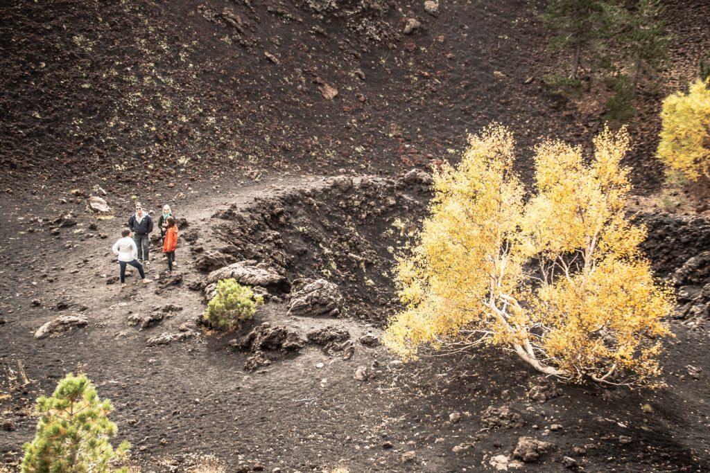 crateri monti sartorius, etna est, betulle